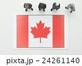 カナダ国旗 24261140