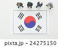 韓国国旗 24275150