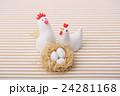 鶏 酉 卵の写真 24281168