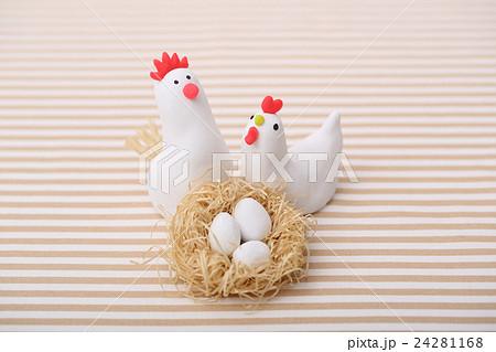 鶏の家族 24281168