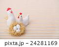 鶏の家族 24281169