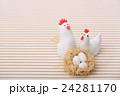 鶏の家族 24281170
