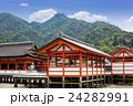 厳島神社 24282991