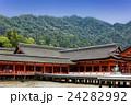 厳島神社 24282992