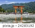 大潮の厳島神社 24283192