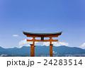 厳島神社の大鳥居 24283514
