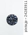 ブルーベリー 白バック 24283911