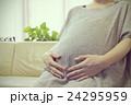 妊婦 妊娠 マタニティの写真 24295959