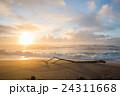 朝焼けの海岸と流木の風景 (優しい雰囲気) 24311668
