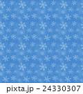 雪 結晶 パターンのイラスト 24330307
