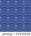 雪 結晶 パターンのイラスト 24330308
