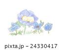 男の子の赤ちゃん 誕生イメージのイラスト 24330417