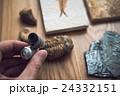 化石 24332151