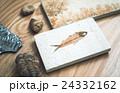 化石 24332162