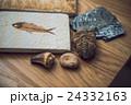 化石 24332163
