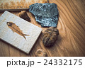 化石 24332175