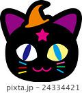 ハロウィン 猫 24334421