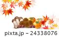 紅葉 秋 食べ物 背景  24338076