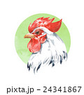 Rooster 2. Watercolor illustration 24341867