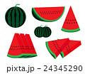 イラスト素材 フルーツ 果物のイラスト 24345290