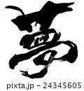 夢 文字 筆文字のイラスト 24345605