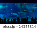 【沖縄県】美ら海水族館 24355814