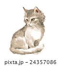 水彩画 ねこ ネコのイラスト 24357086