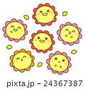 お花たち 24367387