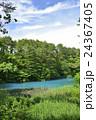 五色沼 裏磐梯 青沼の写真 24367405