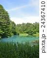 五色沼 裏磐梯 青沼の写真 24367410
