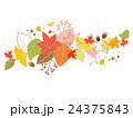 秋のリーフ 曲線ライン 24375843