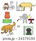 いたずら犬たち 24379195