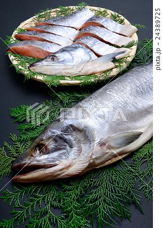 新巻鮭 24389725