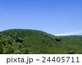 新緑の丘 24405711