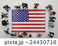 アメリカ国旗 24430716