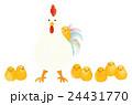 にわとりとひよこ (水彩) ニワトリ親子 24431770