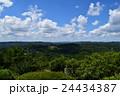 岡山の自然 弥高山06 24434387
