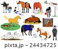 いたずら馬たち 24434725