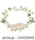 シャクヤク 花 植物のイラスト 24439948