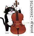ベースを弾く猫_k01 24444756