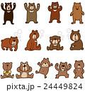 熊 樋熊 月の輪熊のイラスト 24449824