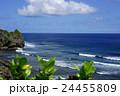 沖縄の夏 具志川城跡 24455809