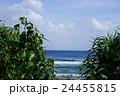 米須海岸でサーフィン 24455815