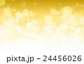 結晶 雪 冬のイラスト 24456026