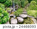 滝 庭園 日本庭園の写真 24466093
