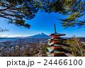 新倉山浅間公園 富士山 冬の写真 24466100