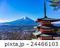 新倉山浅間公園 富士山 冬の写真 24466103