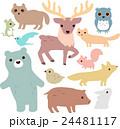 森の動物のイラストセット 24481117