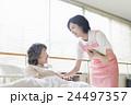 若い介護士 24497357