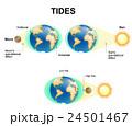 潮 月 地球のイラスト 24501467